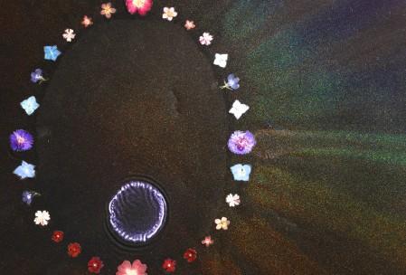 Flora Supernova close up